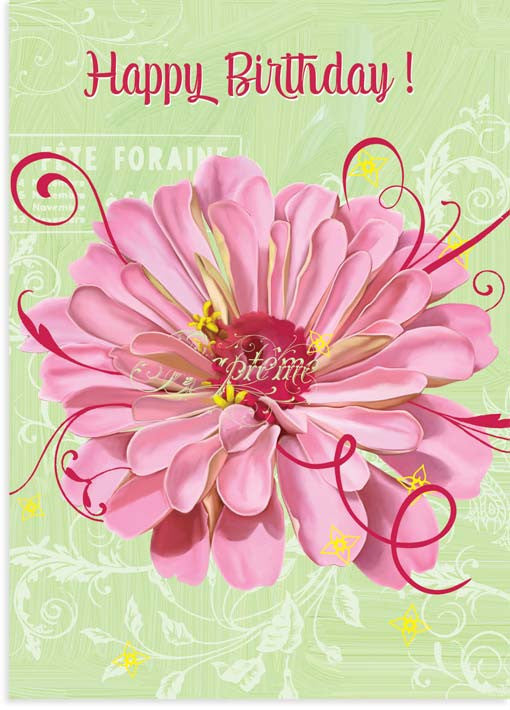 Pink Zinnia Birthday