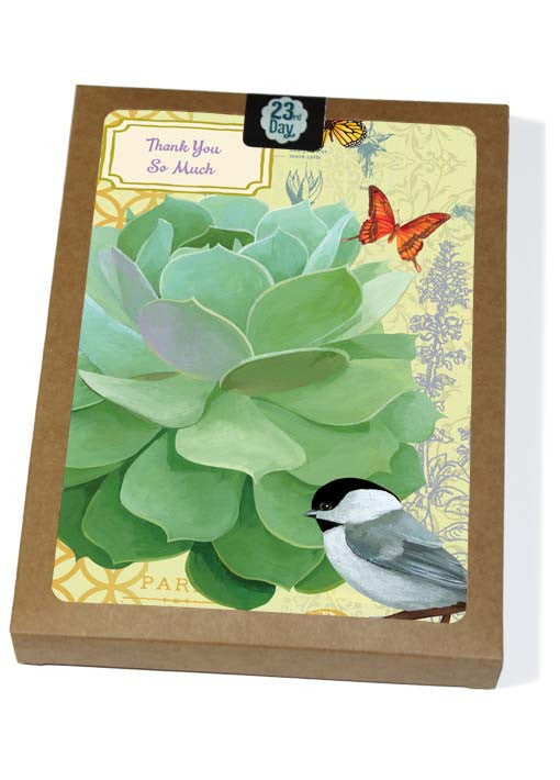 Echeveria with Chickadee Boxed Cards