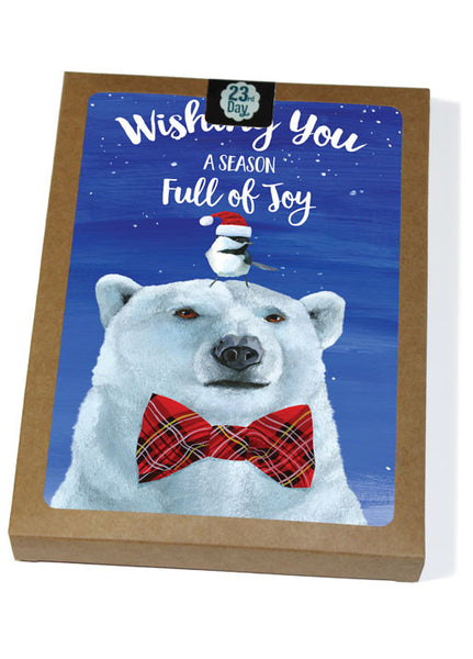 Polar Bear Boxed Cards