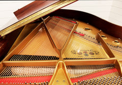 Chickering 507A Grand Piano