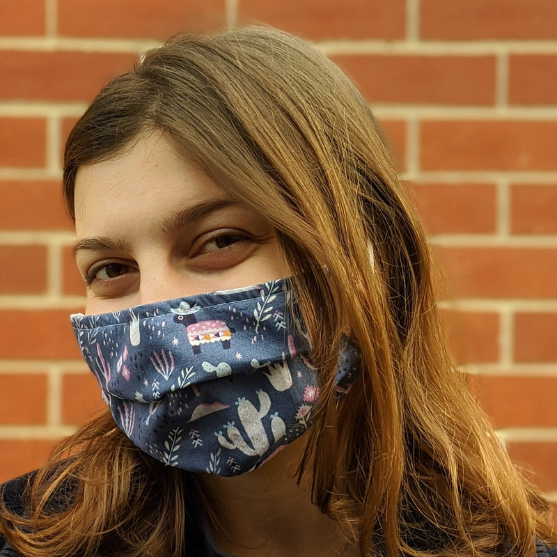 Desert Blues Face Mask