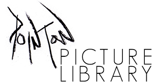 Pointon Picture Library