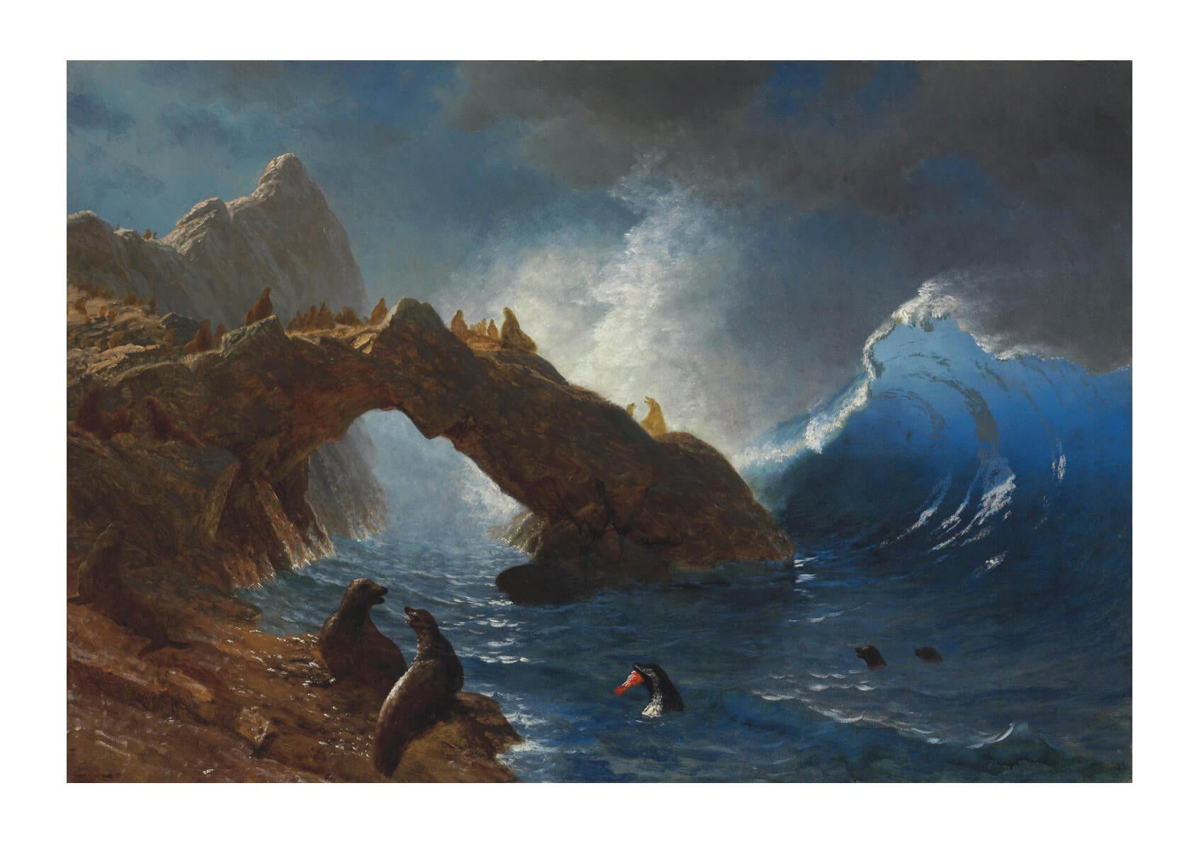 Albert Bierstadt - Seals on the Rocks