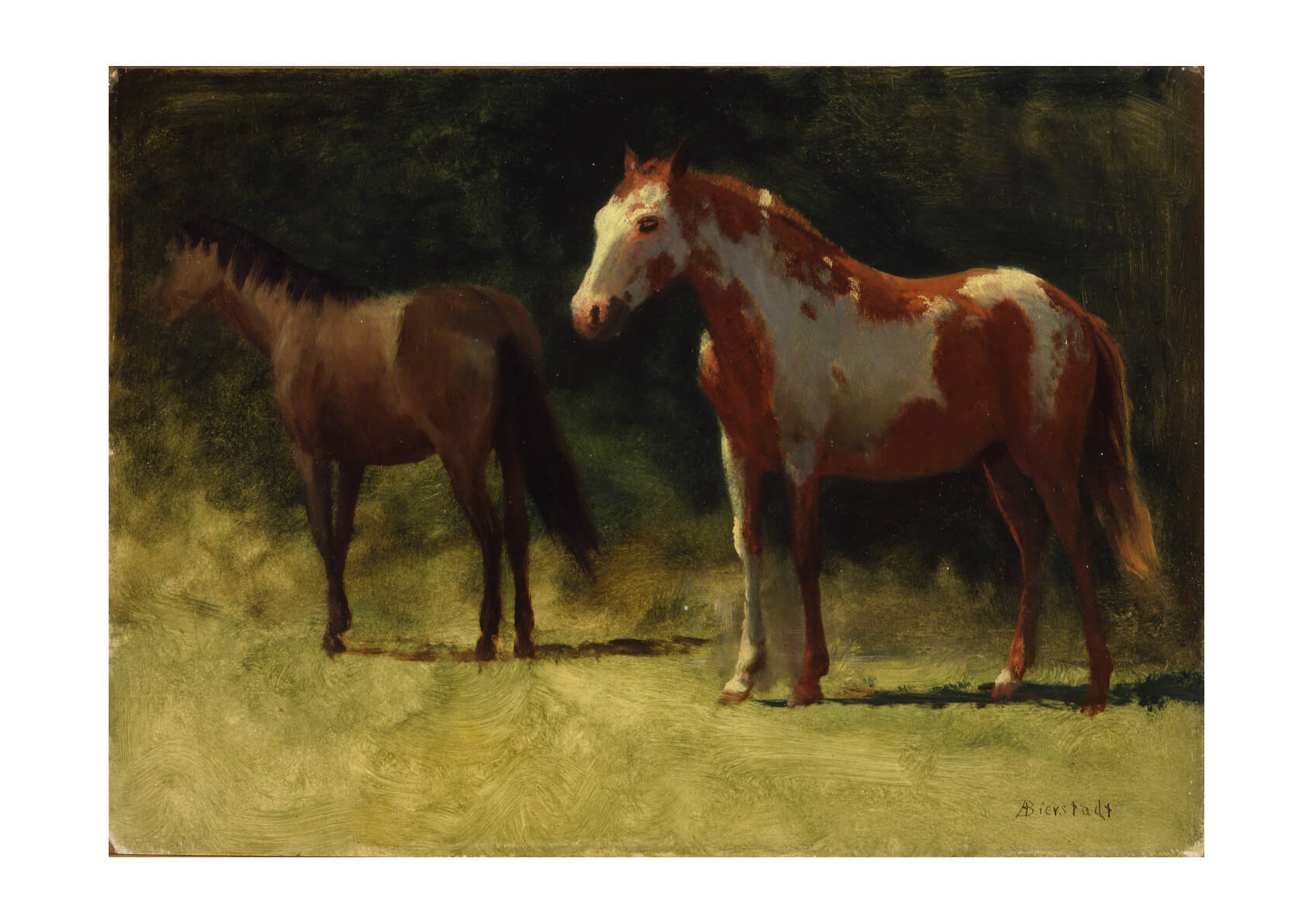 Albert Bierstadt - Two Horses