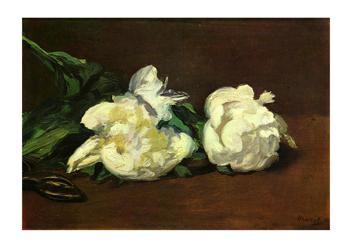 Edouard Manet - White Flowers