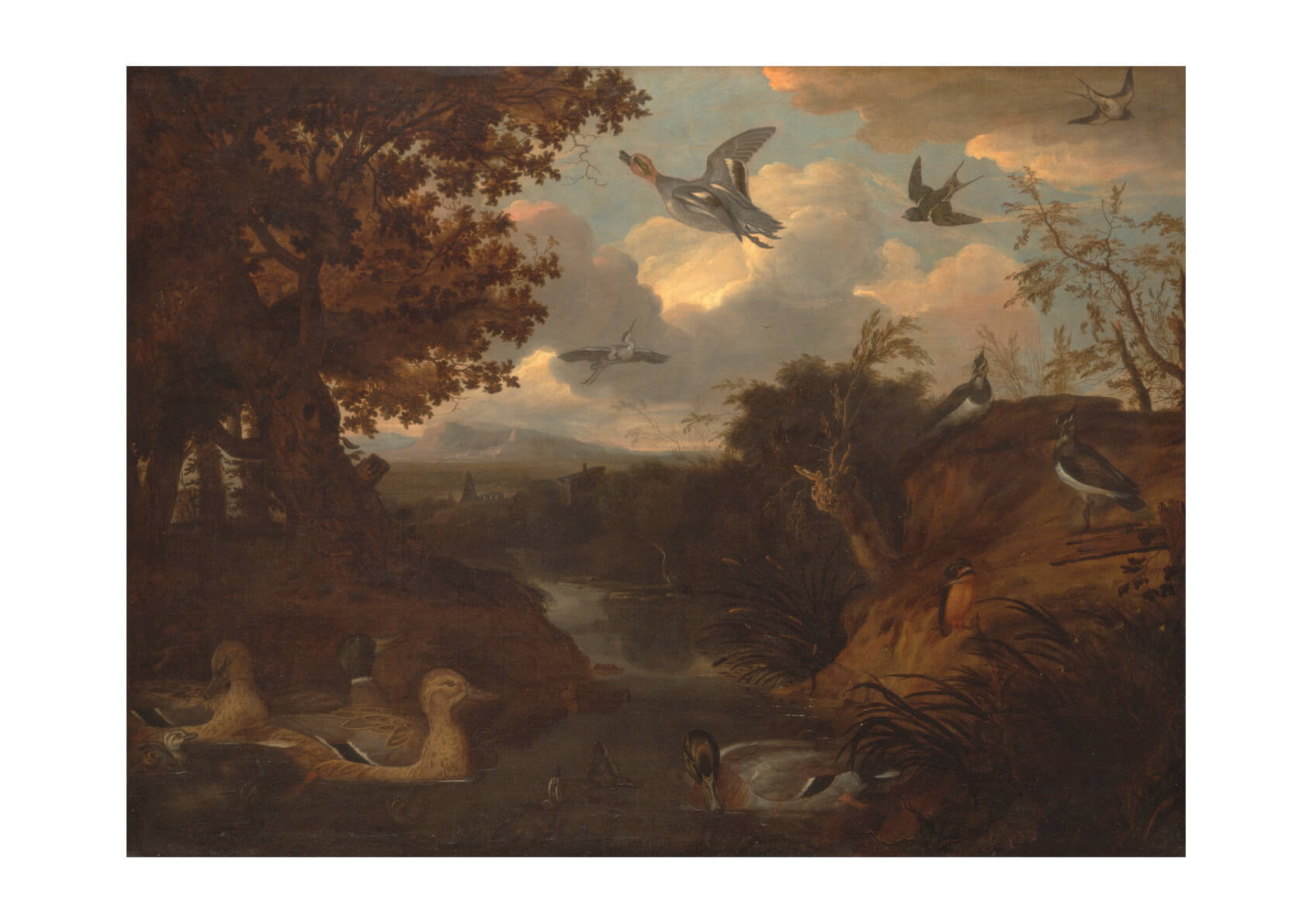 Francis Barlow - Ducks and Other Birds