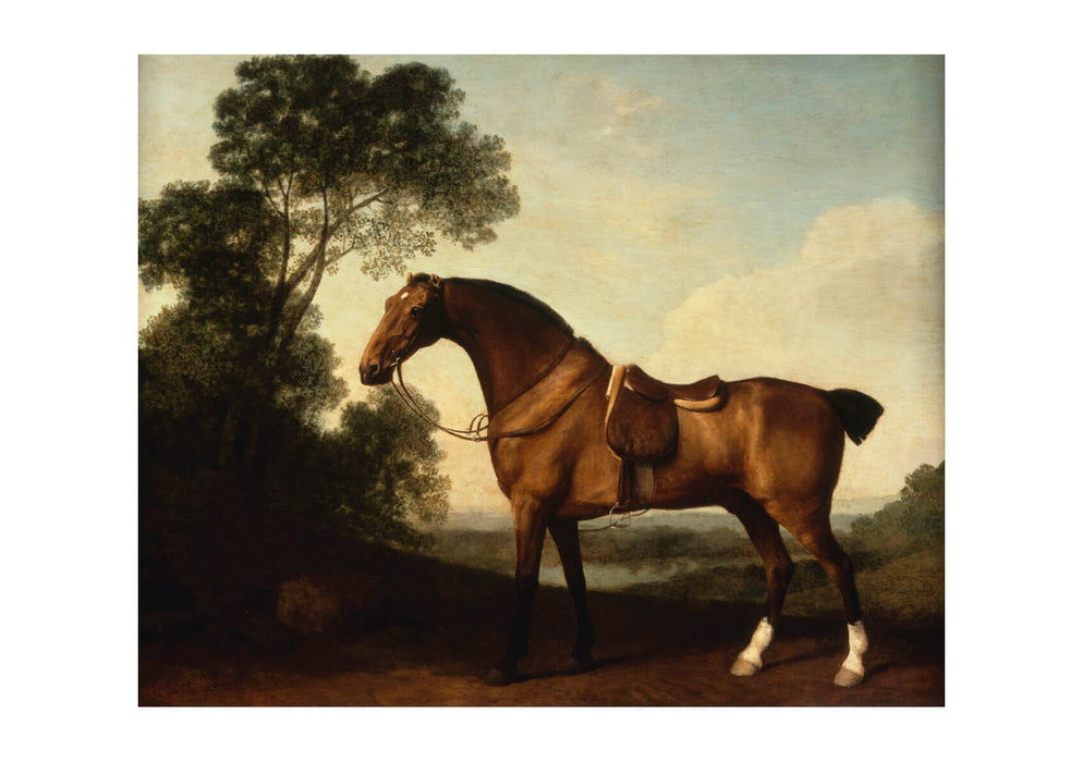 George Stubbs - A Saddled Bay Hunter