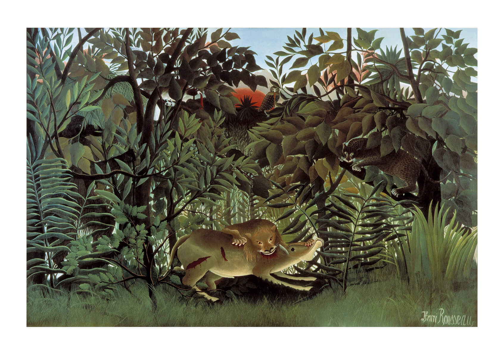 Henri Rousseau - Hungry Lion