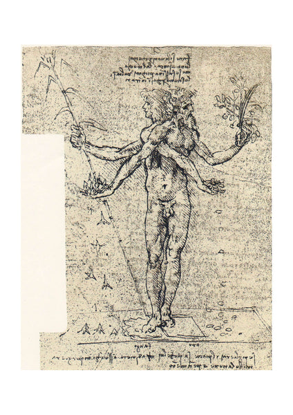 Leonardo Da Vinci - Drawing of Androgyn Corpus with Two Heads