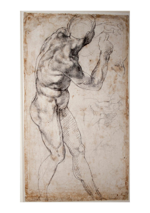 Michelangelo - Male Nude turning to the Right