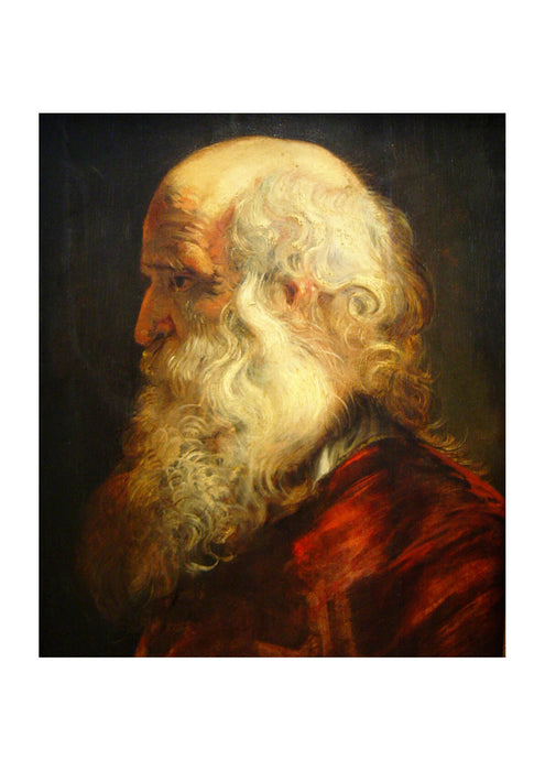 Peter Paul Rubens - Old Man