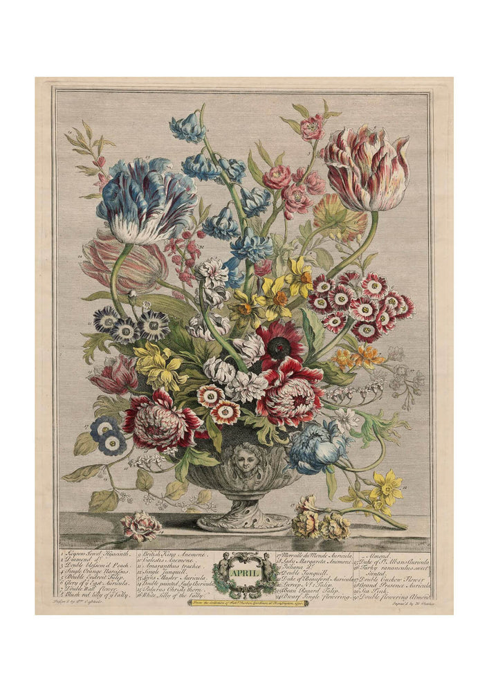 Roberty Furber - Twelve Months of Flowers April