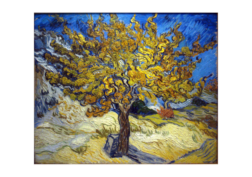 Vincent Van Gogh - The Mulberry Tree