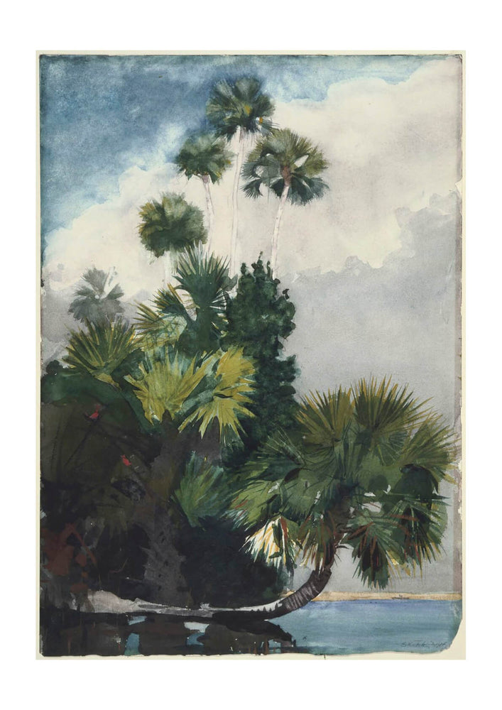 Winslow Homer - Palm Trees Florida (1904)