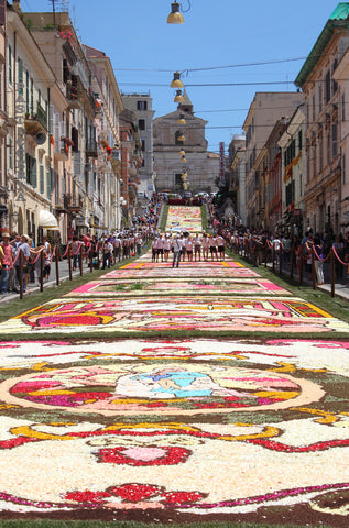 carpet of flowers in Italy