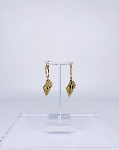 Earrings Tampa Shell Hoops