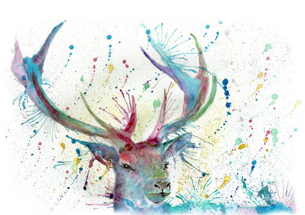 Proud (Stag)