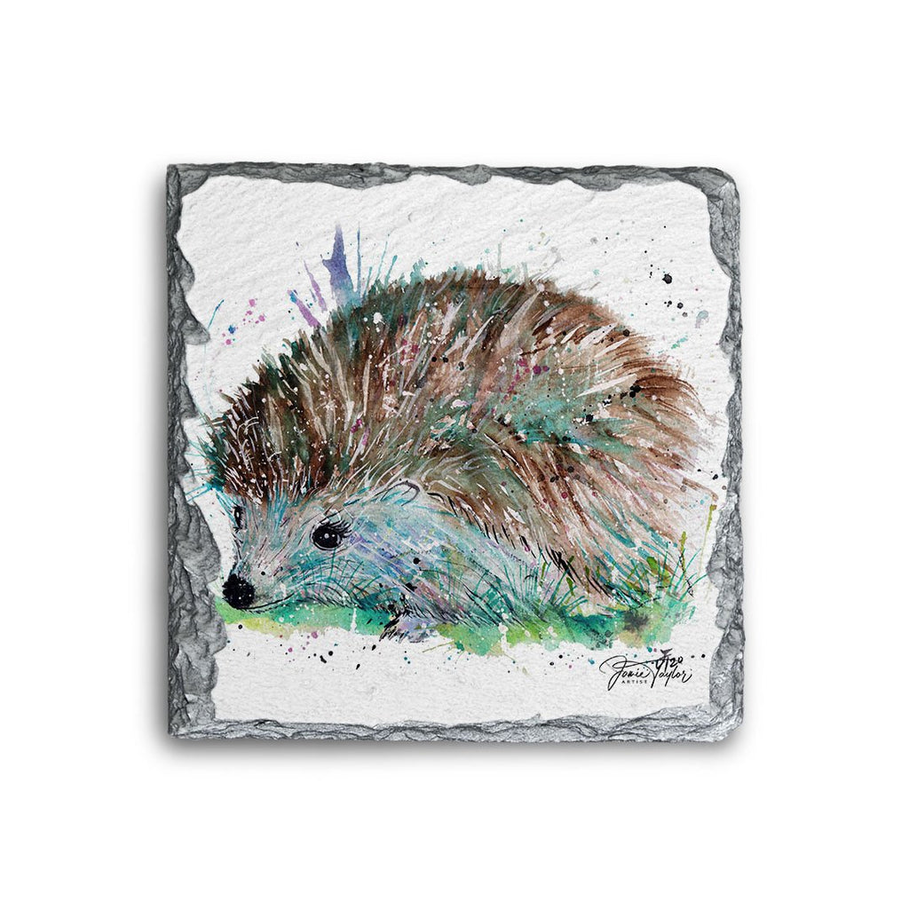 """Sweet"" Hedgehog Square Slate Coaster"