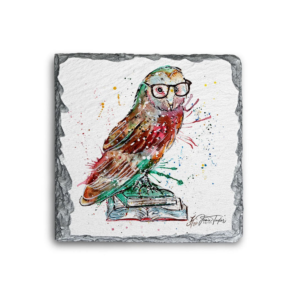 """Knowledge"" Owl Square Slate Coaster"