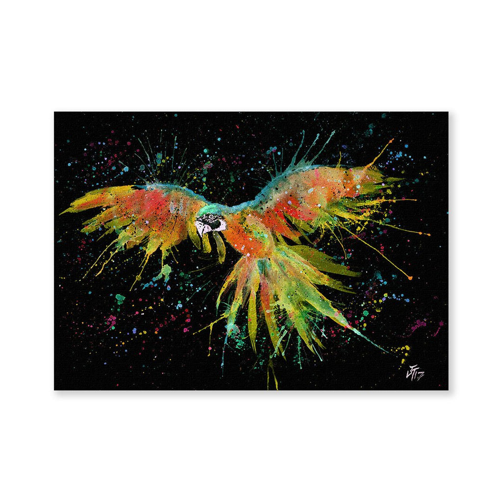 """Ian"" Parrot Enchanted Signed Fine Art Print"