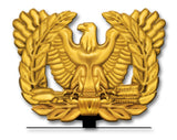 Warrant Officer Rising Eagle Table Sign
