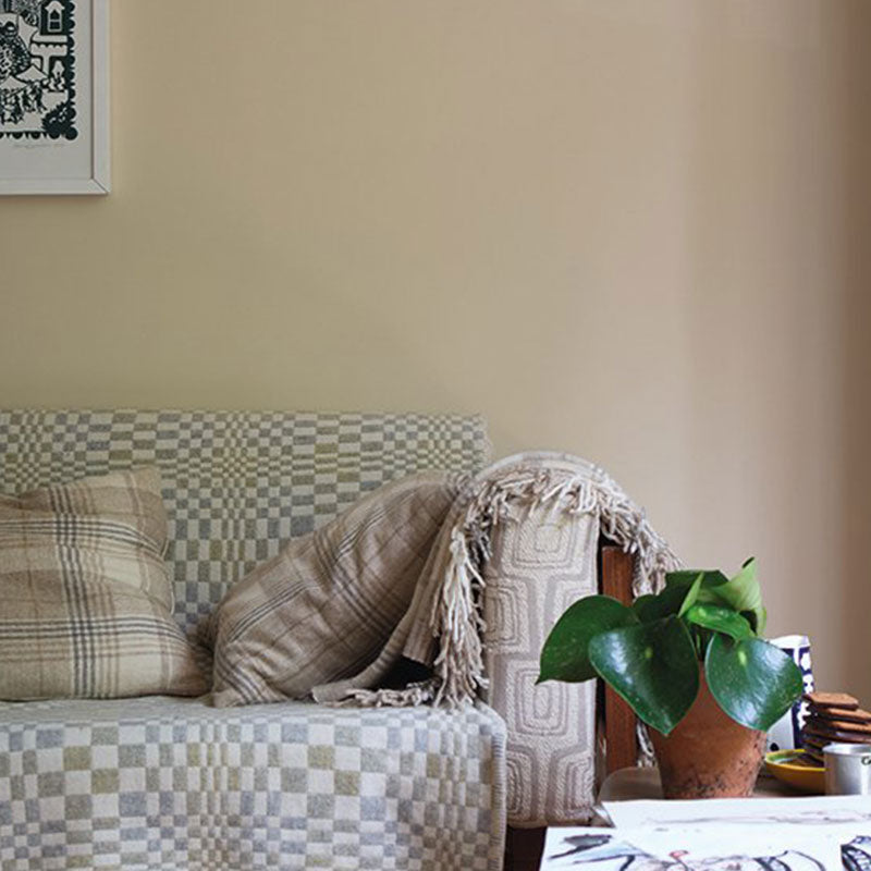 Farrow & Ball <br/> Modern Emulsion <br/> Orange Coloured White W5