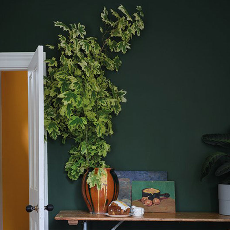 Farrow & Ball <br/> Modern Emulsion <br/> Duck Green W55