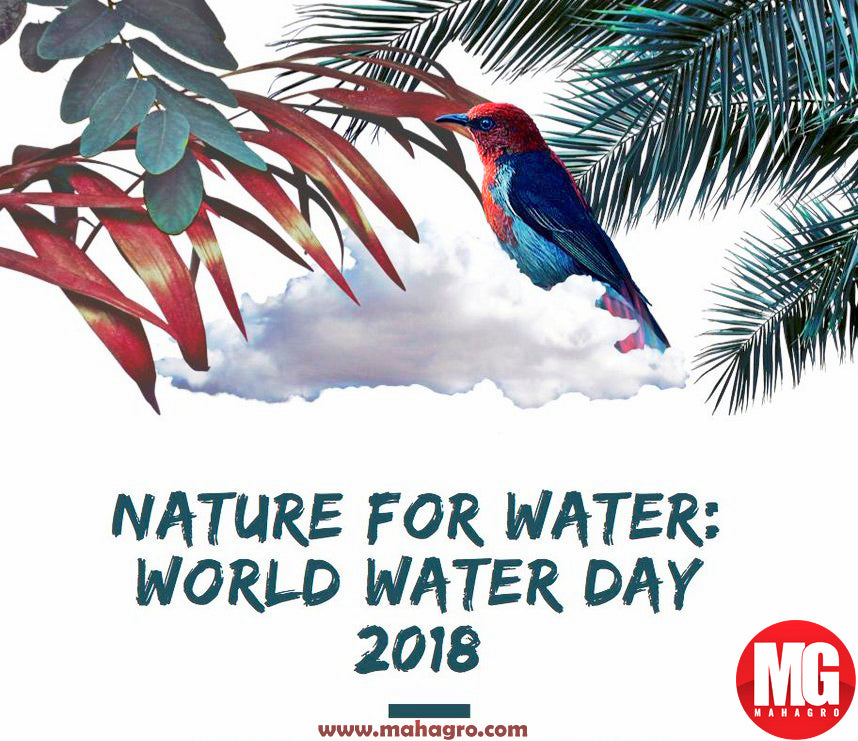 save water- world water day