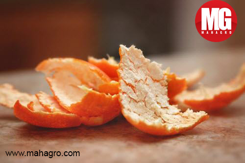 Benefits of Using Citrus Peel in Your Garden