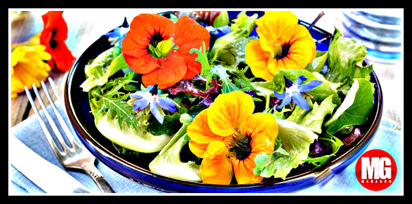 5 Edible Flowers to Grow in Your Vegetable Garden