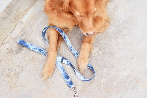 Leash, Blue Tie-Dye Denim.  Donate