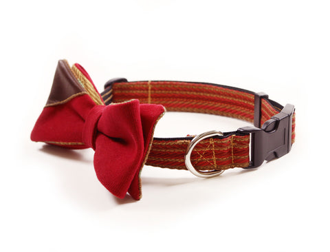 INDY Princeton Pup Bow Tie Collar