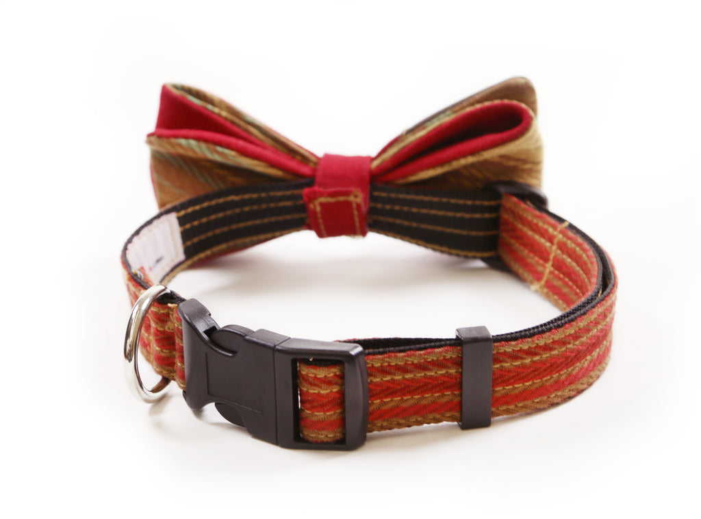 INDY Princeton Pup Bow Tie