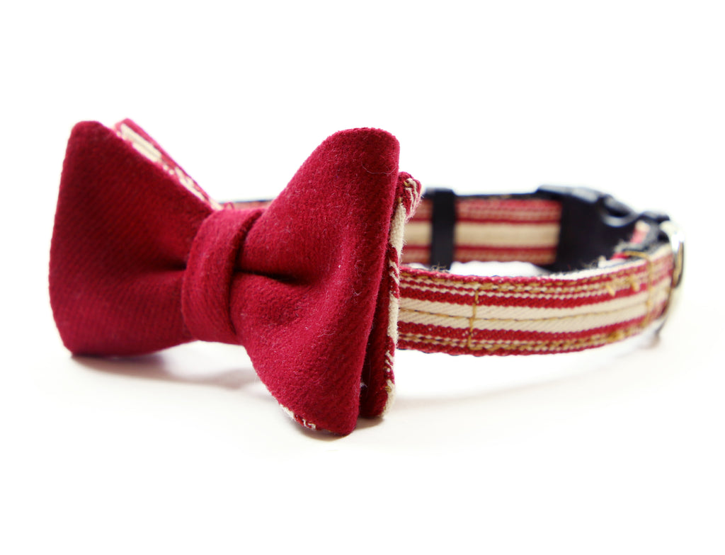 AMERICANA Bow Tie Collar. Donate