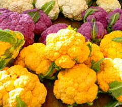 CAULIFLOWER TASTY COLORFLOWER MIX GL
