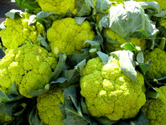 CAULIFLOWER TASTY GREEN GL