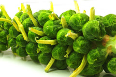BRUSSEL SPROUTS TASTY SPROUTS GL