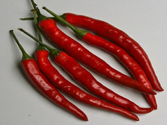 PEPPER HOT CAYENNE LONG RED THIN