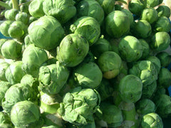 BRUSSEL SPROUTS HEALTH PLUS GL