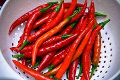 PEPPER HOT FM TASTY CALIENTE CAYENNE GL