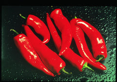 PEPPER HOT FM TASTY HOT PEPPER GL