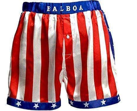 Vertical Flag Boxing Shorts