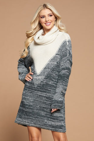 Oversized Turtleneck Knit Dress