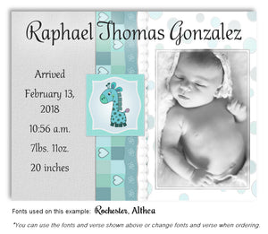 Aqua Photo Birth Announcement Magnet