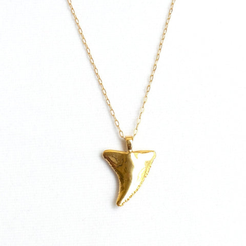 Shark Tooth Pendant Necklace - Estilo Concept Store
