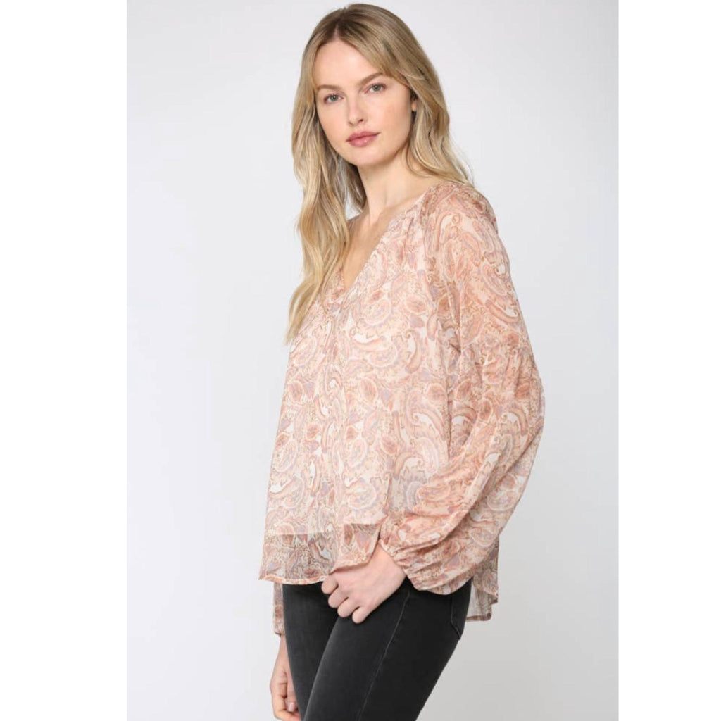 Sheer Blush Blouse
