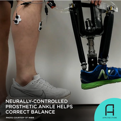 Researchers are developing a neurally-controlled prosthetic ankle that helps users correct balance.
