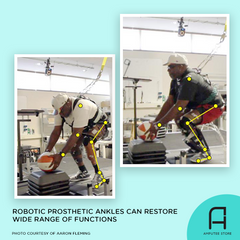 Researchers found that robotic prosthetic ankles can restore a wide range of functions in lower-limb prosthetic users.