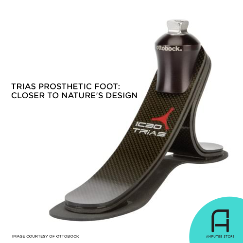 Ottobock's Trias 1C30 has a structure similar to the human foot.