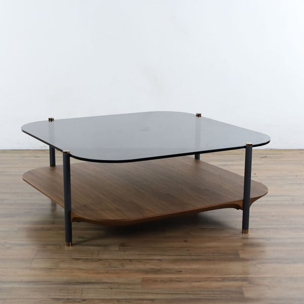 Modrest Toby Modern Coffee Table in Smoked Glass and Walnut